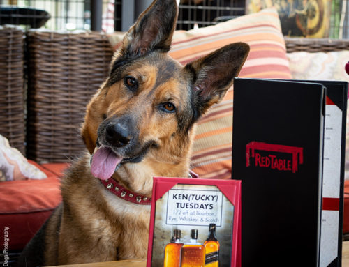 We Give Red Table Restaurant in Huntington Beach Two Paws Up!